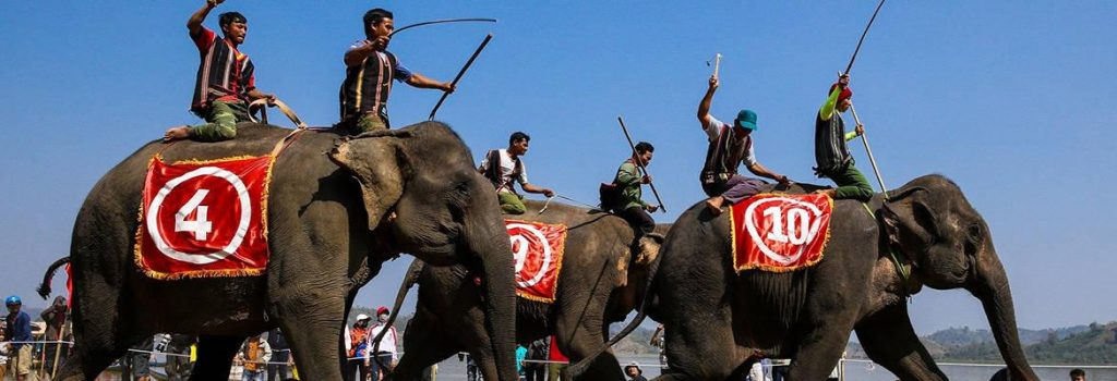 Elephant Racing Festival – Central Highlands