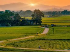 Countryside of Hue
