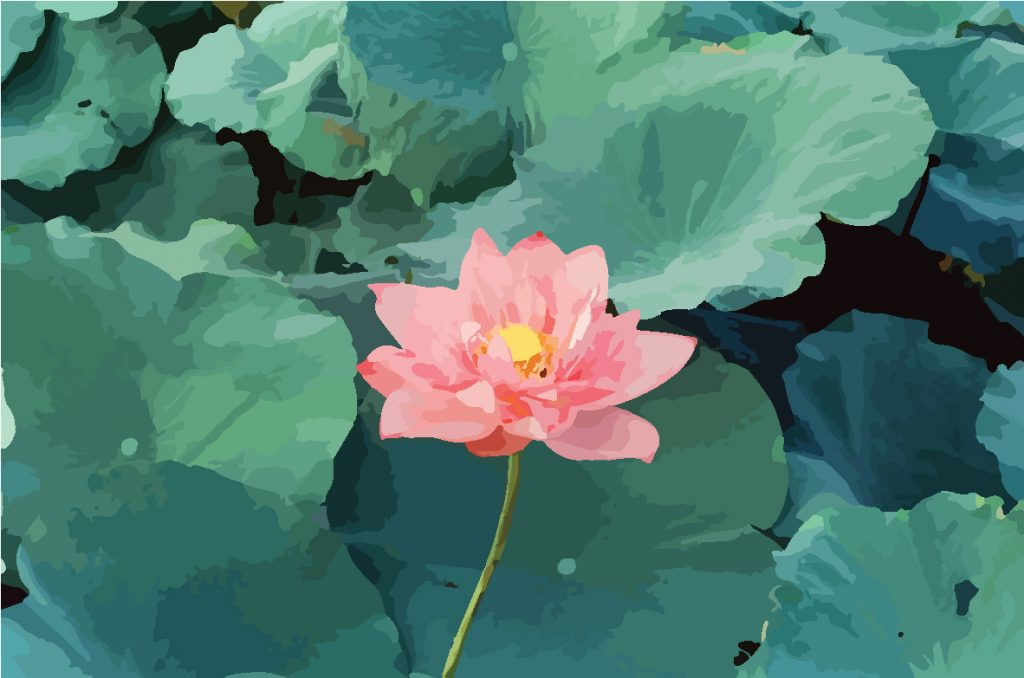 Lotuses play an important role in Vietnamese life.