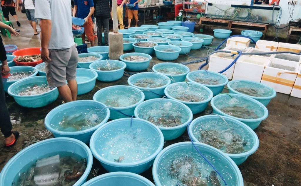 Danang Food: Seafood – along My Ke Beach