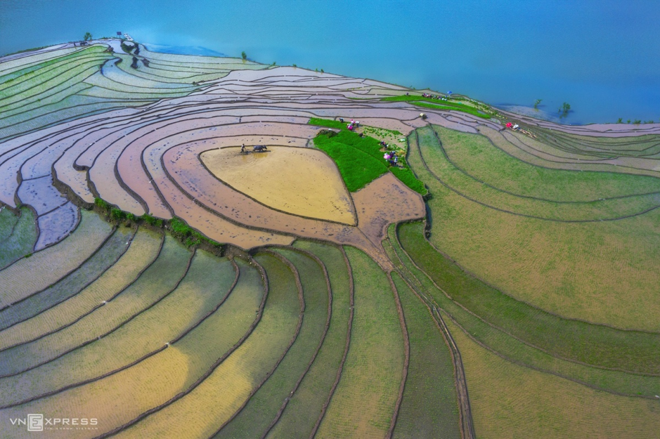 rice terraces in Lao Cai