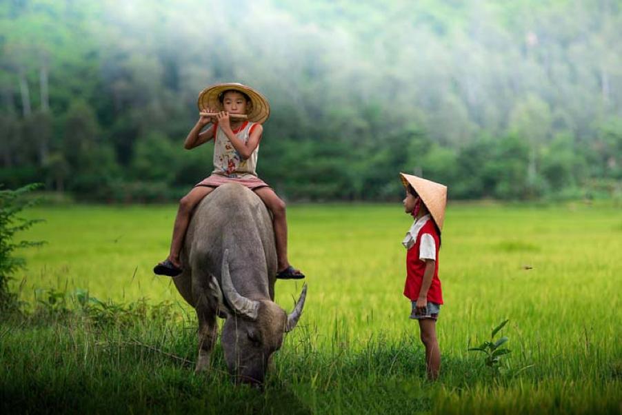 Vietnamese childhood experience