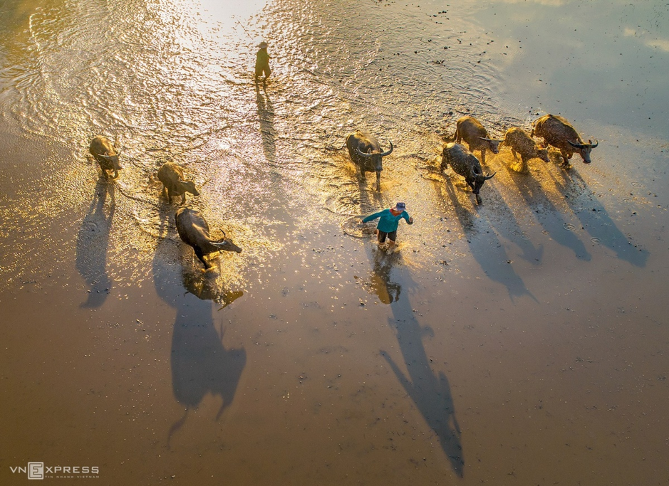 flooding season in Southwest Vietnam