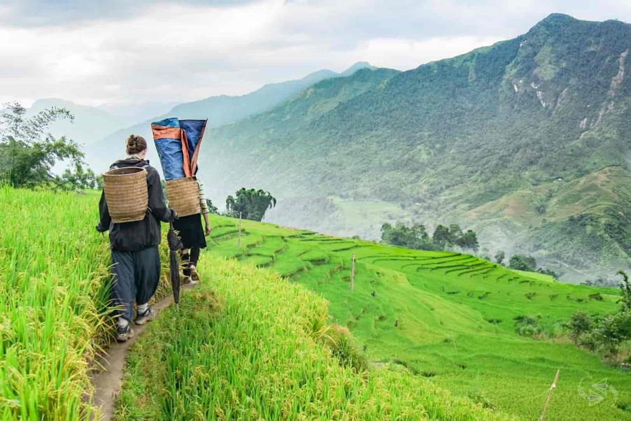 family trip in Vietnam